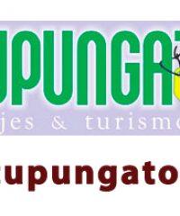 Tupungato Viajes
