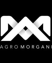 Morgani
