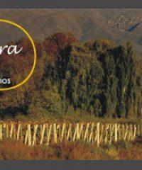 Mediterra Agrimensura